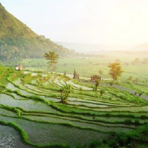 bali guide before visiting you should know